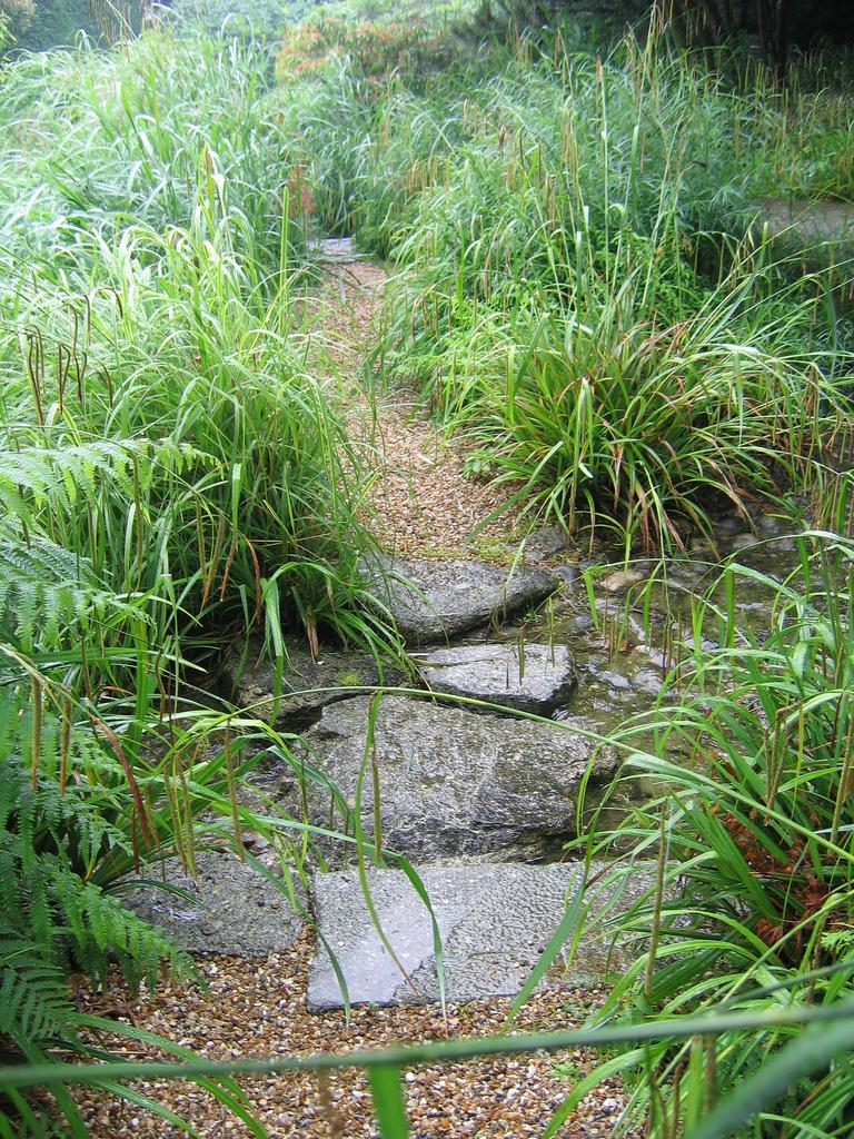 jardins japonais du havre pierre du sidobre - Jardin Japonais Le Havre